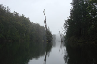 Kayaking the Kangaroo River, Kangaroo Valley, NSW photo